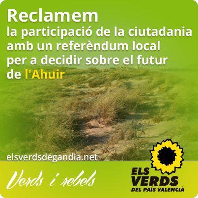 Els Verds reclamen la participació de la ciutadania amb un referèndum local per a decidir el futur de l'Ahuir