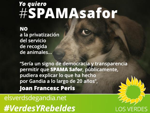 Los Verdes exigen a la Alcaldesa de Gandia que promueva y participe en un debate público con representantes de SPAMA Safor sobre la privatización del servicio de recogida de animales