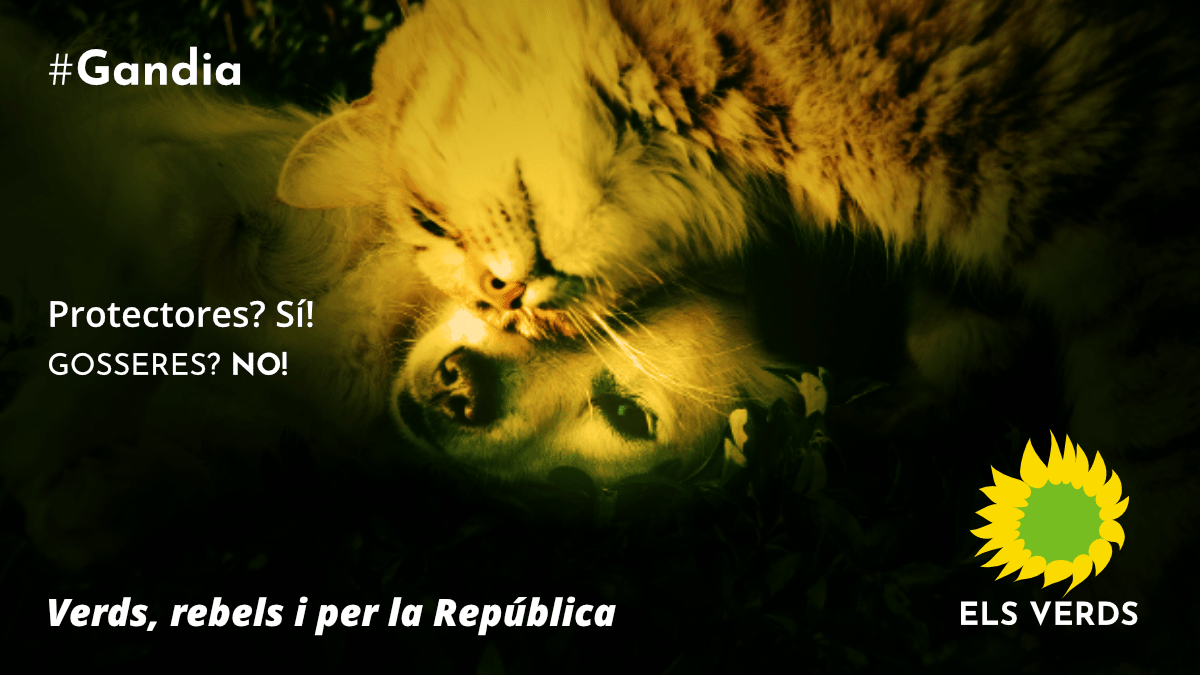 Els Verds convoquen a totes les persones animalistes i amigues dels animals a participar en la manifestació en defensa de les protectores del proper dissabte 9 de juny a Gandia.