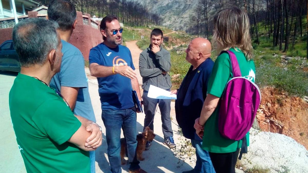Els Verds impulsaran un Pla estratègic de regeneració, conservació i protecció de les masses forestals de Gandia